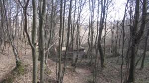 16.3-rd day-ecopath Tryavna-Bozhentsi
