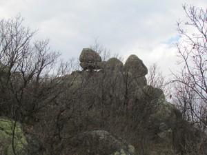 23.1-st day-Buzovgrad ecopath