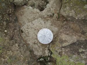 26.1-st day-Buzovgrad ecopath-megalit