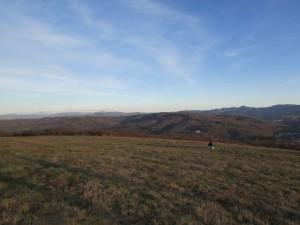 56.3-rd day-Bozhentsi-Tryavna ecopath