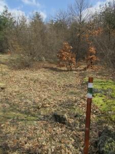 6.1-st day-Buzovgrad ecopath