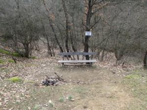 7.1-st day-Buzovgrad ecopath