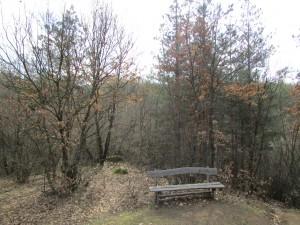 8.1-st day-Buzovgrad ecopath