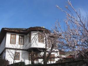 8.Dryanovo