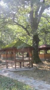 3.Bozhenishki urvich-Chekotinski manastir