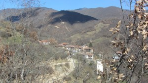 11.Kashina