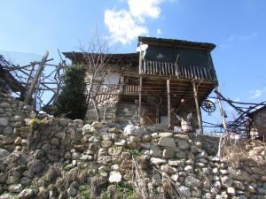 13.Kashina