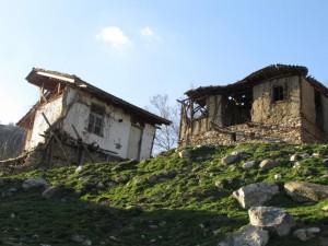 26.Kashina