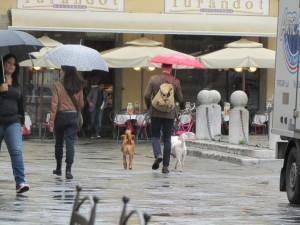 14.Lucca