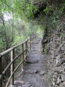 46.Vernazza-Corniglia
