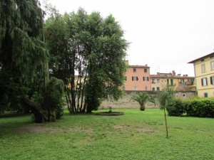 59.Lucca