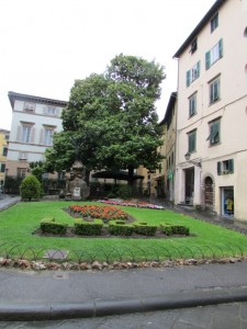 8.Lucca