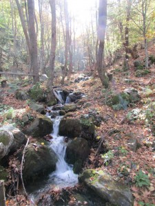 22.Yavornishki waterfall