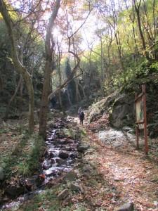 25.Yavornishki waterfall