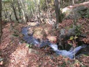36.Yavornishki waterfall