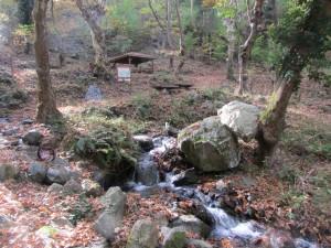 39.Yavornishki waterfall