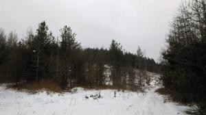 12.Lisetz mountain