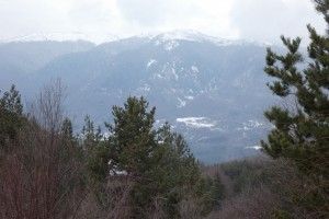 21.Lisetz mountain