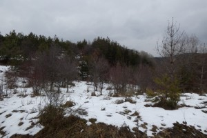 25.Lisetz mountain