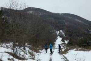 5.Lisetz mountain