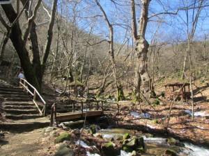 20.Koleshinski waterfall