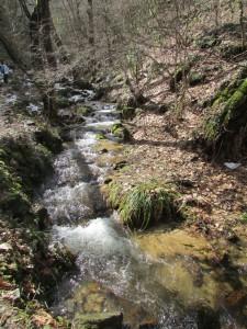 25.Gabrovski waterfalls