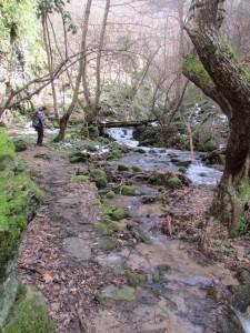 27.Gabrovski waterfalls