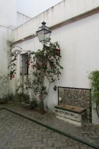 28.Sevilla-Alcazar