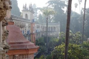 34.Sevilla-Alcazar-Grotto Gallery