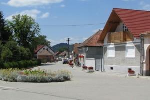 12.Carta village