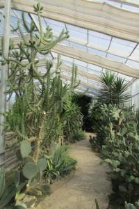 20.Botanic garden and palace Balchik