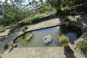 31.Botanic garden and palace Balchik