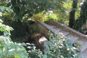 42.Botanic garden and palace Balchik-Bridge of sights