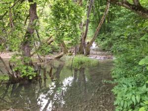 10.Bigra river