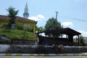 23.Bashevo village