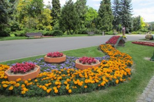 37.Brasov-city park