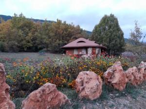 2.Omaya