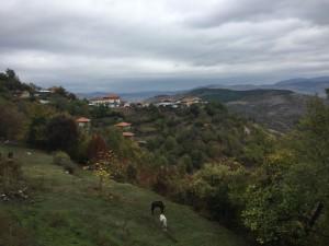 23.Beslen village