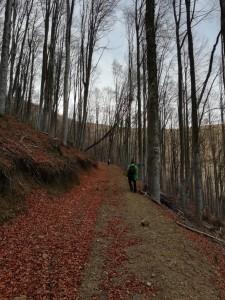 12.Vlahina mountain