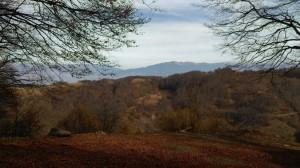 14.Vlahina mountain