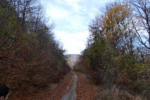3.Vlahina mountain