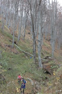 7.Vlahina mountain