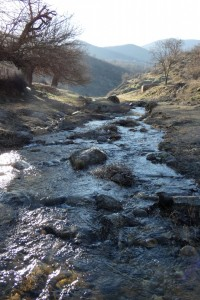 8.Tsarnushka river