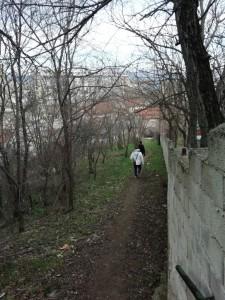 7.Bitola