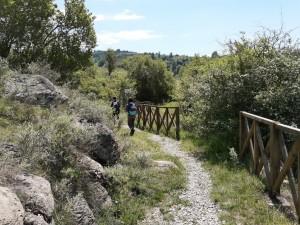 10.Lyubcha village-sport path