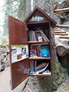 11.Kasak waterfall-library