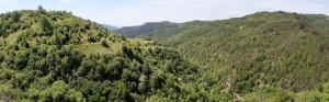 15.Lyubcha village-sport path