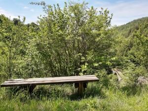 18.Lyubcha village-sport path