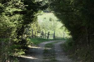 28.Chavdar village-sport path