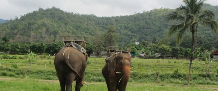 Приключения в северните части на Тайланд